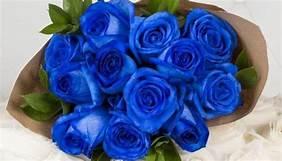 青いバラ 父の日