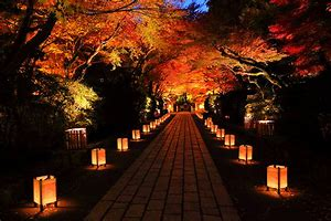 石山寺 紅葉 ライトアップ