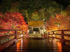 吉野山 紅葉ライトアップ