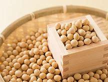 ヨネキチ 大豆ミート