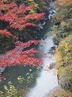 大血川渓谷 強石(こわいし)