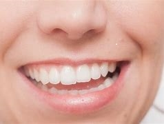 歯ぎしり 高齢者